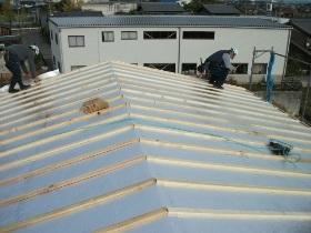 非公開: ゆるやかなNaturalBox(建築中) 屋根工事