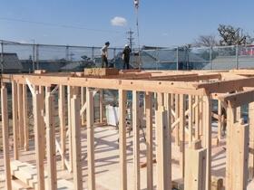 非公開: 木に包まれて暮らす二世帯平屋建て(只今建築中) 上棟の様子