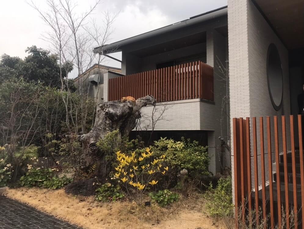 |安水建設|愛知県安城市を中心に三河エリアの木造注文住宅・リフォーム会えたらラッキー?
