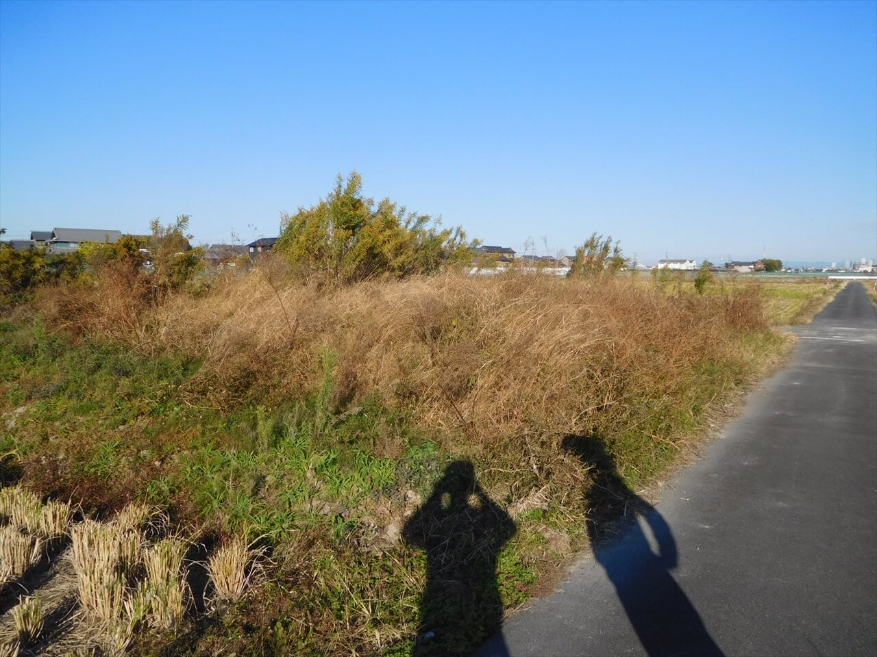 日記|安水建設|愛知県安城市を中心に三河エリアの木造注文住宅・リフォームこんな事も